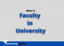 What is Faculty at University